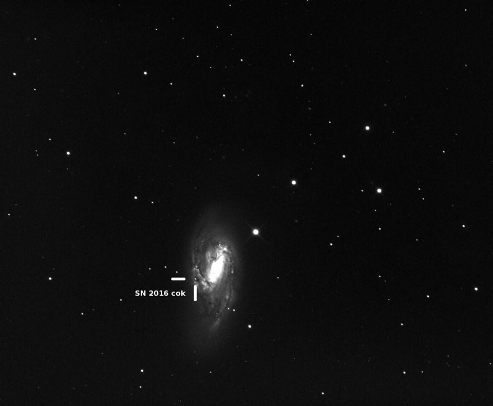 Supernova en M66 2