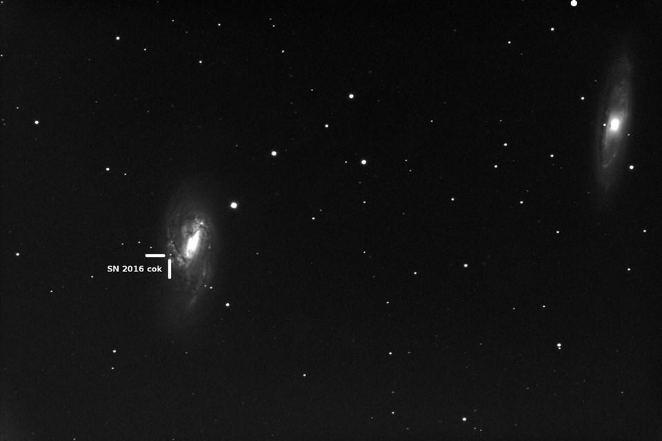 Supernova en M66